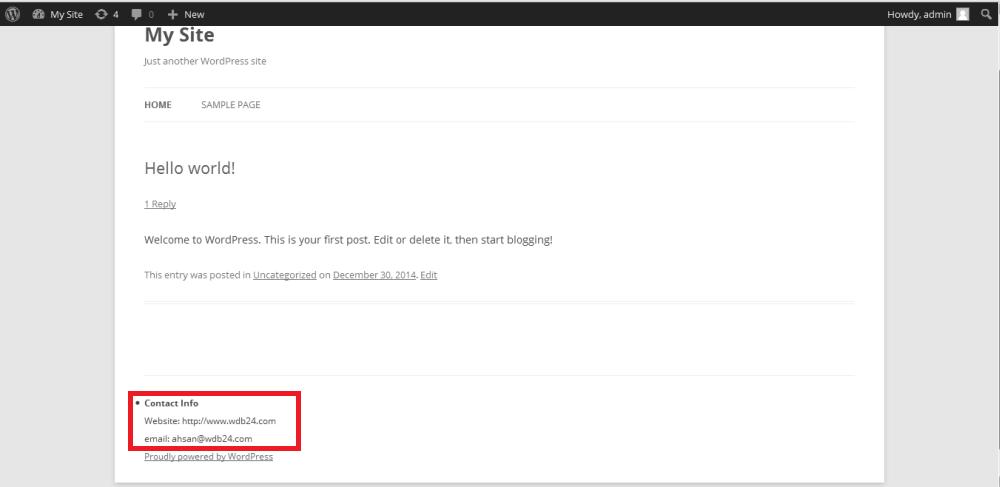 footer widget contact info